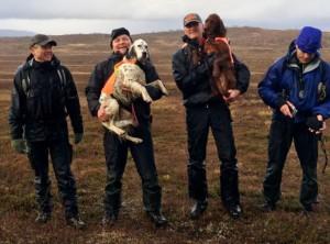 SM_Fjäll_2014_placerade hundar och domare