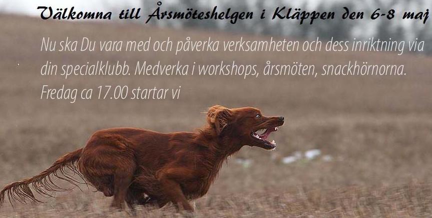 Brittiska Stående Fågelhundarnas Årsmöteshelg 6-8 maj 2016 i Kläppen.